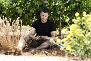 Weingut auf Mallorca